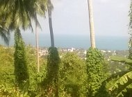 1 Rai Sea -View land Chaweng