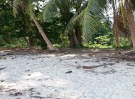 Bank grak Beach Front Land