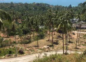 SEA VIEW PLOT OF LAND IN CHAWENG NOI FOR SALE