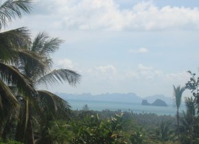 SUBDIVIDED  SEA VIEW LAND PLOTS FOR SALE IN TALING NGAM