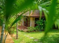 TROPICAL VILLAS FOR MONTHLY AND DAILY RENT