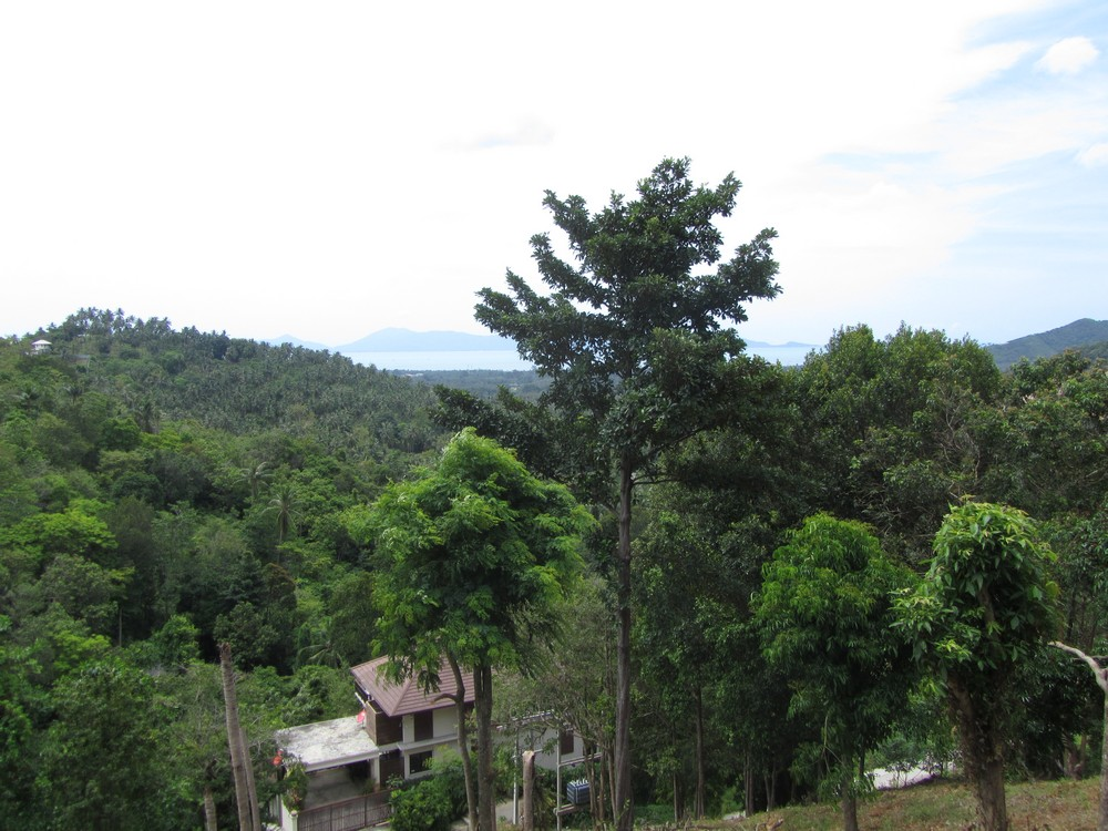 Small sea view land plot koh samui real estate luxury property for sale rent - Houses for small plots of land ...